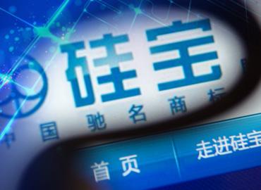 国弘现代受让17.8%股权成硅宝科技单一大股东