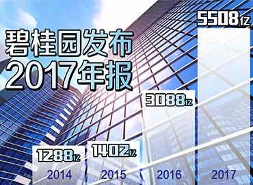 碧桂园去年净利翻倍2018年不设销售目标